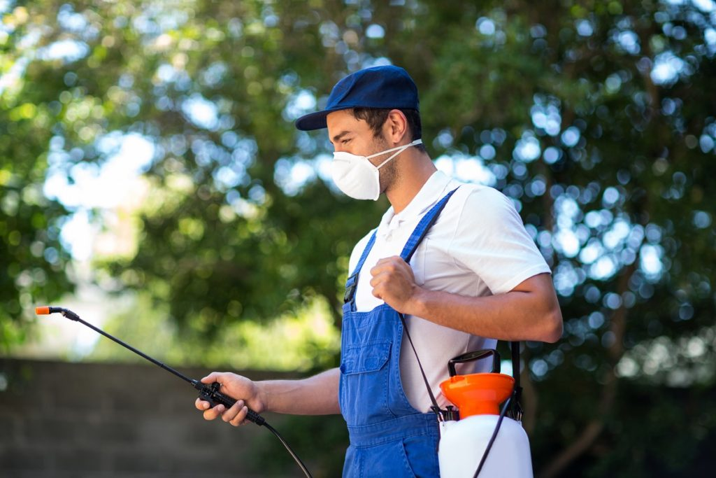 Worker spraying insecticide outdoors