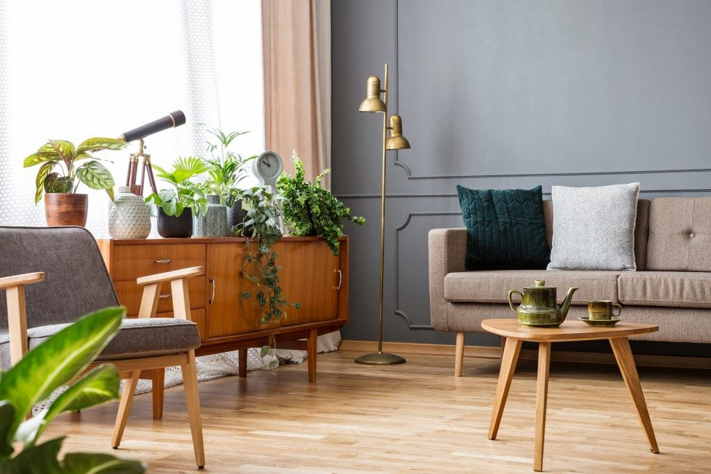 Living room with indoor plants