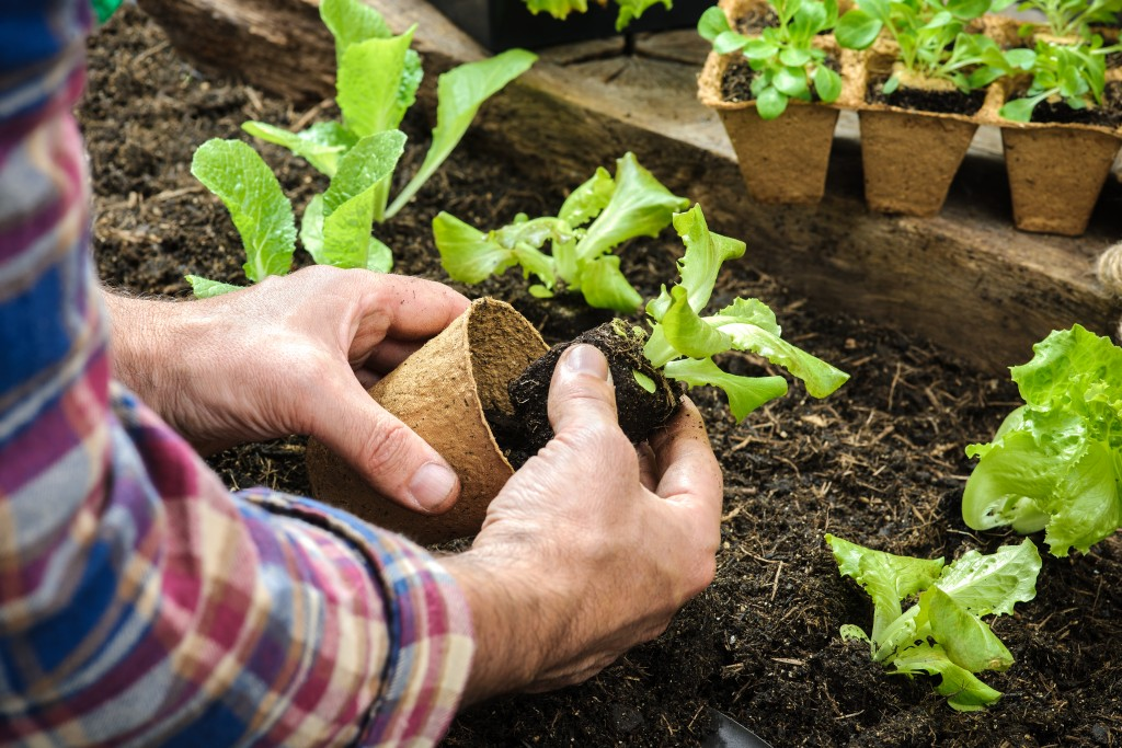 5 Ways To Stop Soil Erosion From Happening To Your